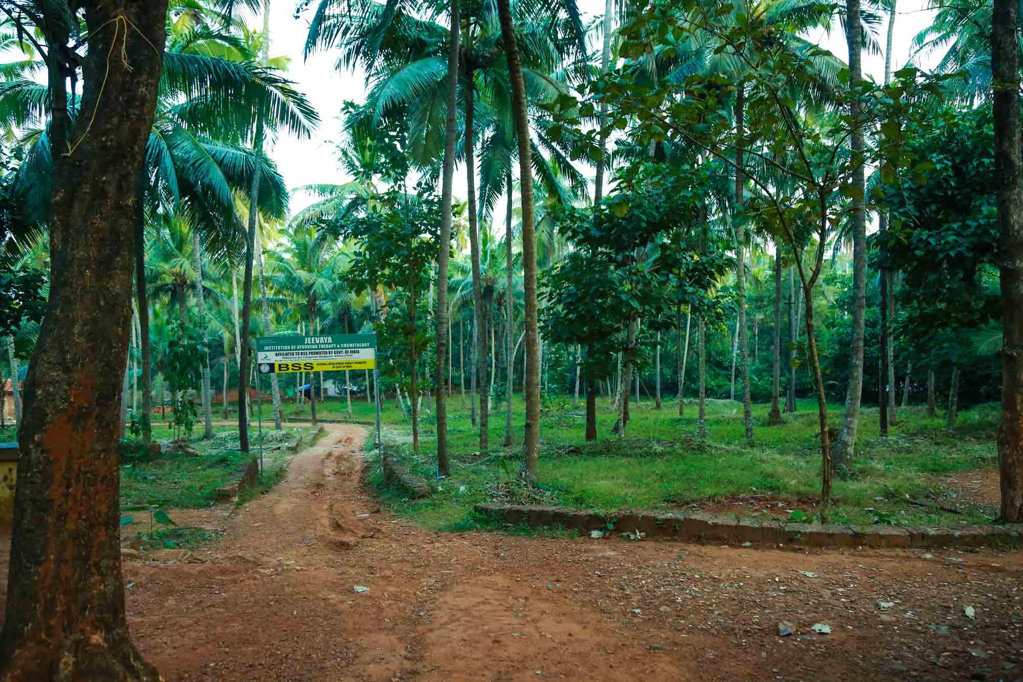 Jeevaya Spa study campus3